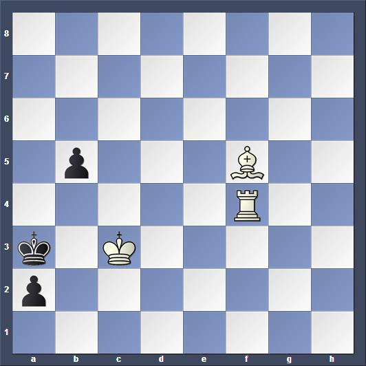 Schach Studie Onkoud