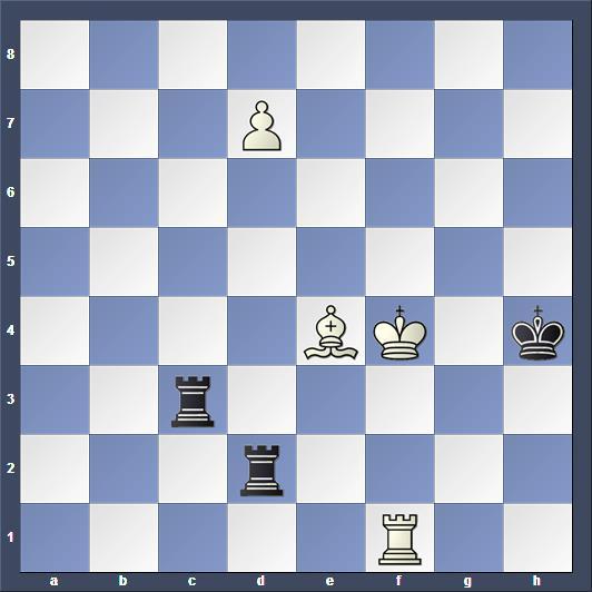 Schach Studie Gorgiev