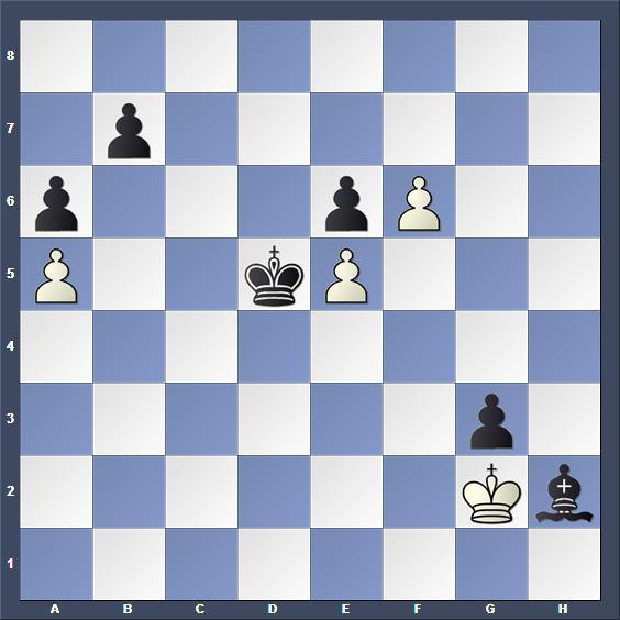 Schach Studie Timman