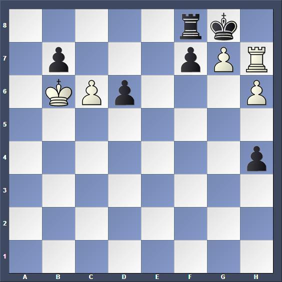 Schach Studie Hildebrand