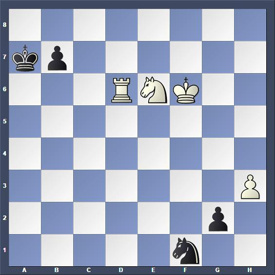Schach Studie Kivi