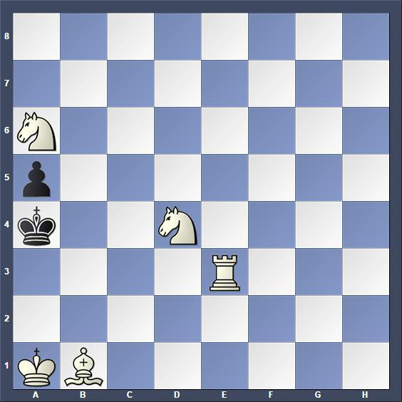 Schach Schachproblem Kapica