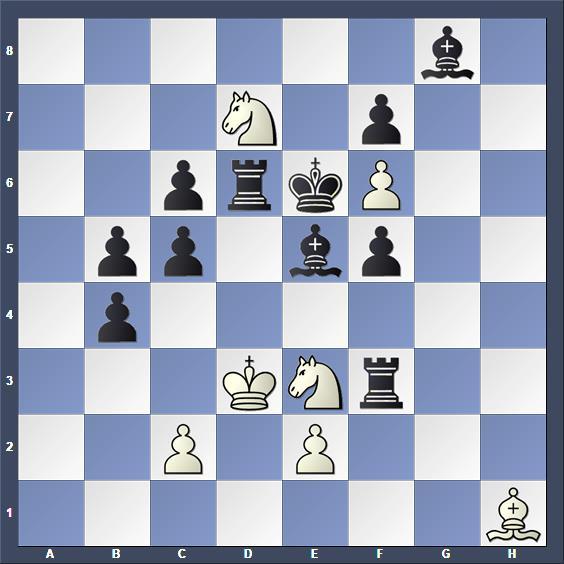 Schach Selbstmatt Fillery