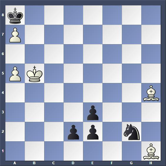 Schach Studie Zinar