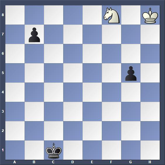 Schach Studie Afek