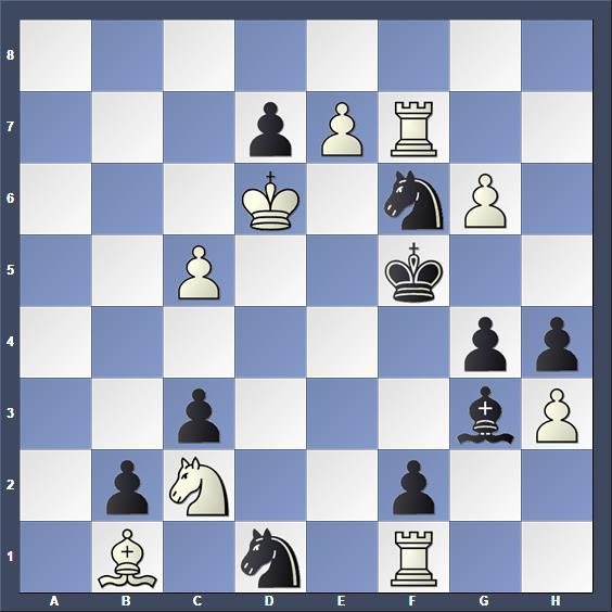 Schach Selbstmatt Fiedler
