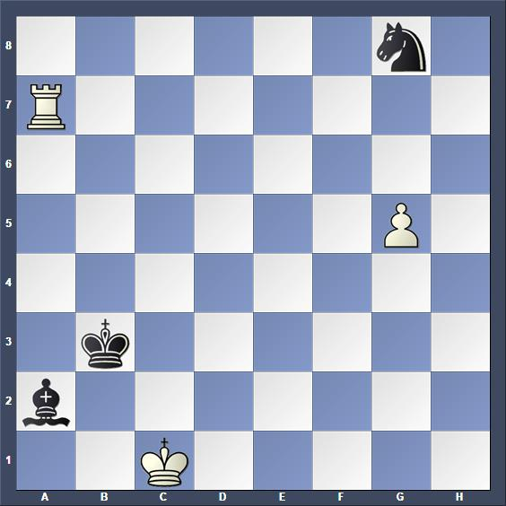 Schach Studie Prokop