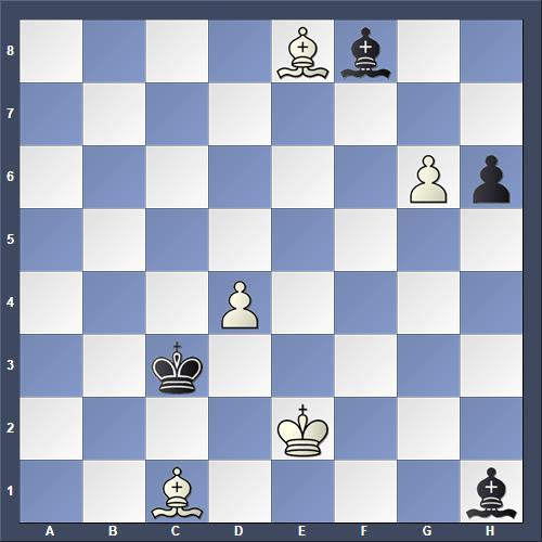 Schach Studie Birnov