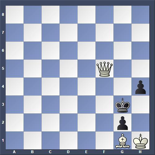 Schach Selbstmatt Bakke