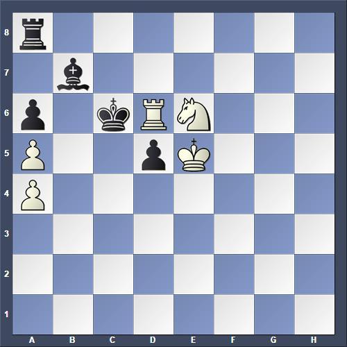 Schach Studie Pervakov