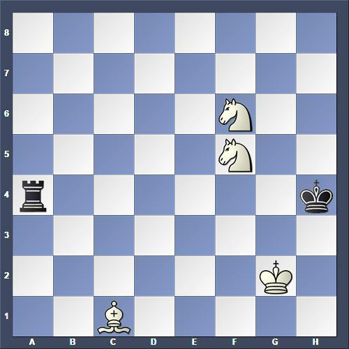 Schach Studie Matous