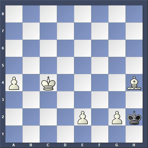 Schach Schachproblem Willmott