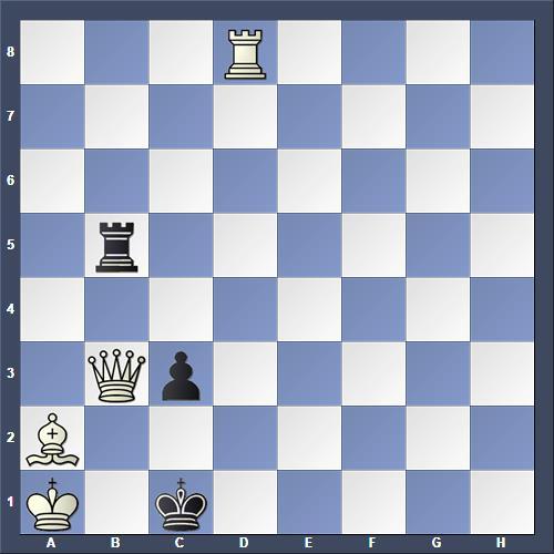 Schach Schachproblem Bakke