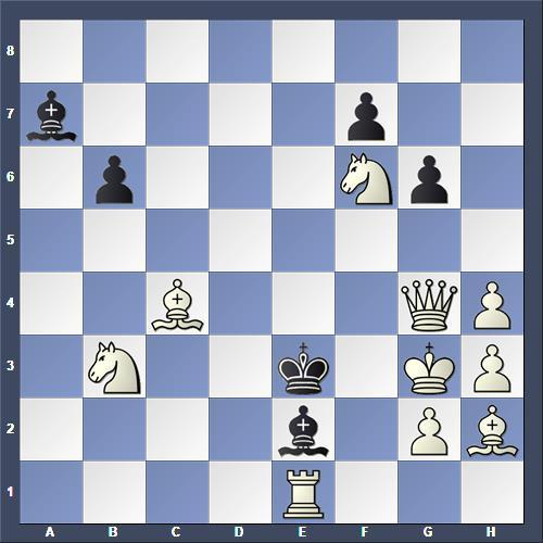 Schach Schachproblem Perrone