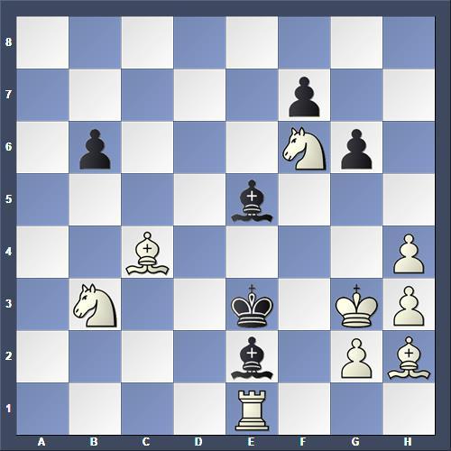 Schach Selbstmatt Perrone
