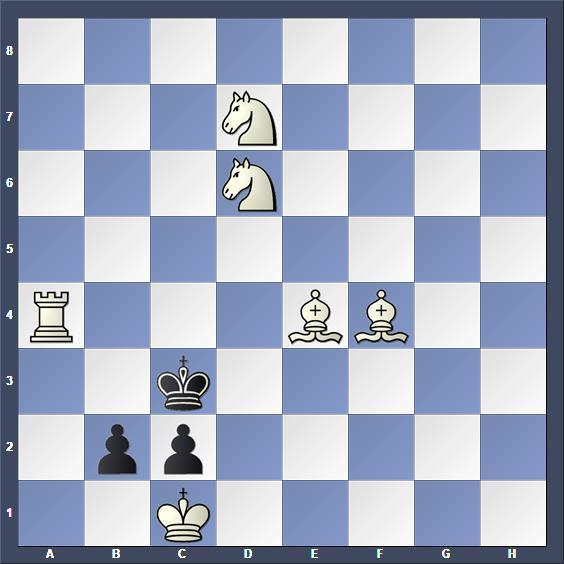 Schach Selbstmatt Dowd
