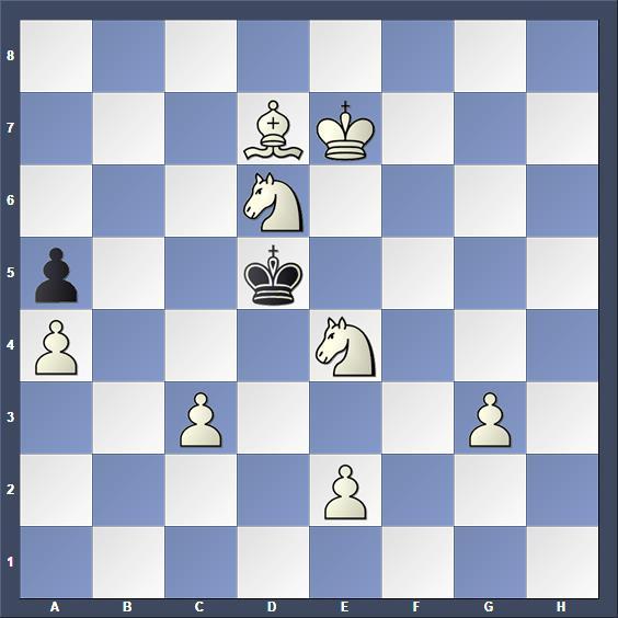 Schach Schachproblem Hoiden